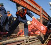 Ankara Büyükşehir Belediyesinden yerli çiftçiye destek.