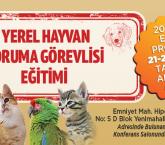 Ankara Büyükşehir Belediyesinden hayvanlarla ilgili çalışmalar.